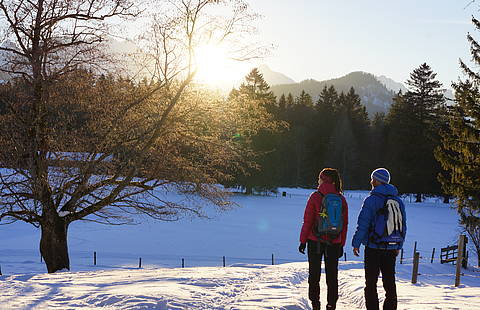 Winterwandern in Schwangau